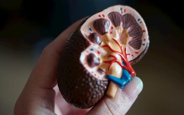hipertenzijos gydymas lėtiniu inkstų nepakankamumu