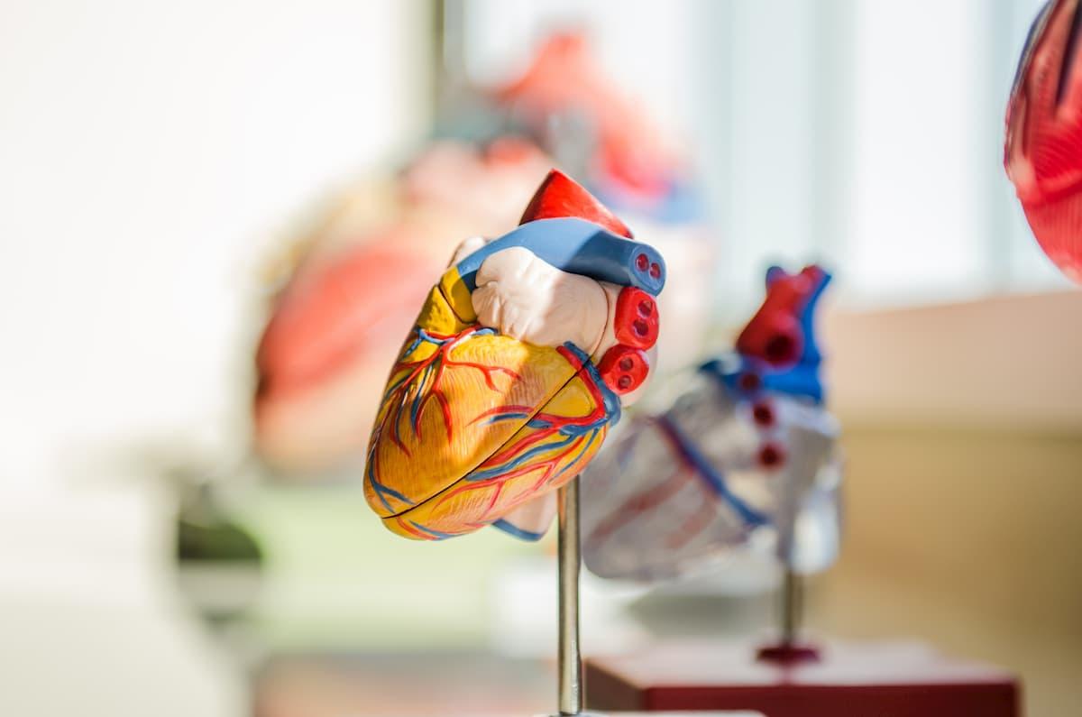 hipertenzija naudinga informacija