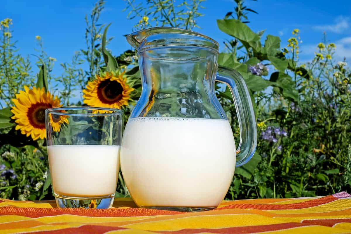 Kiek vandens sunaudojama 1 litrui pieno pagaminti 5 pieno rūšys