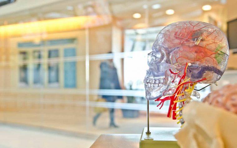 Plačiai naudojami vaistai galimai sukelia Alzheimerio ligą, atskleidė tyrimas