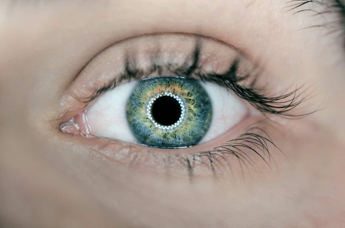 Akių mikrochirurgijos įgūdžių lavinimo simuliatorius – pirmą kartą Lietuvoje