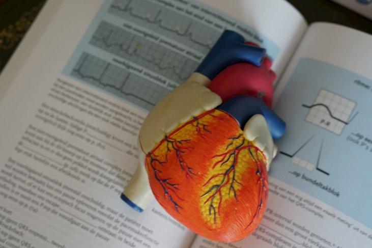 kaip išgydyti hipertenziją ir sumažinti kraujospūdį)