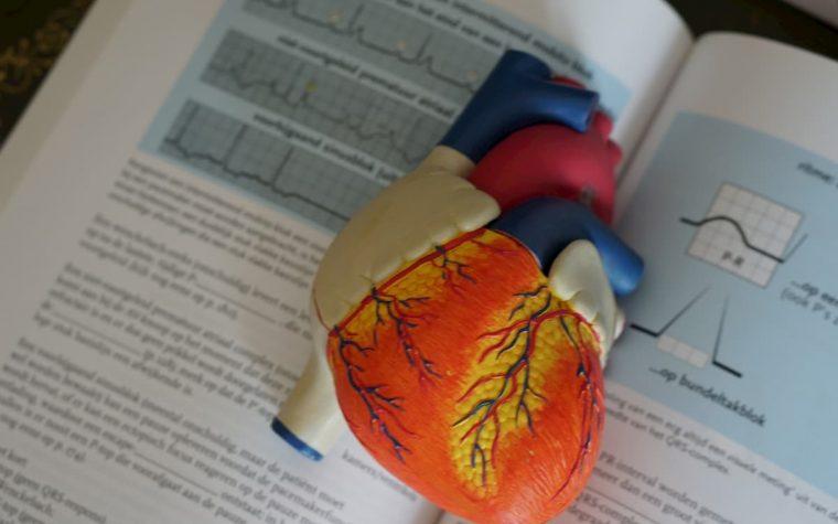 Tyrimas parodė, kaip namų sąlygomis galima sumažinti kraujospūdį natūraliu būdu