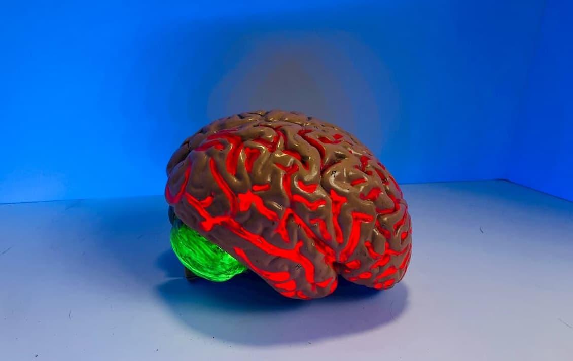 Psichodelikas DMT skatina naujų nervinių ląstelių formavimąsi, rodo tyrimas
