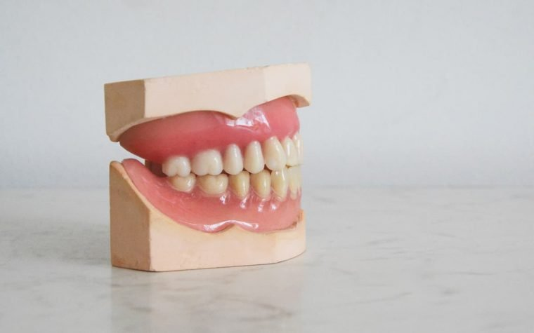 Dantų mokomasis muliažas.